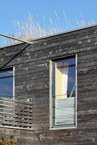 Sonnenrain: Fenster-Detail