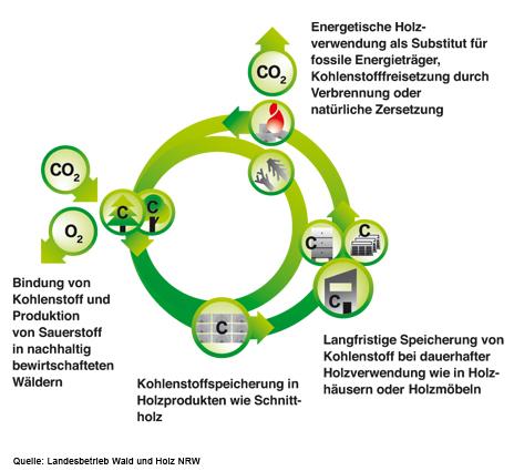 Grafik zu Klimaschutz & Nachhaltikeit