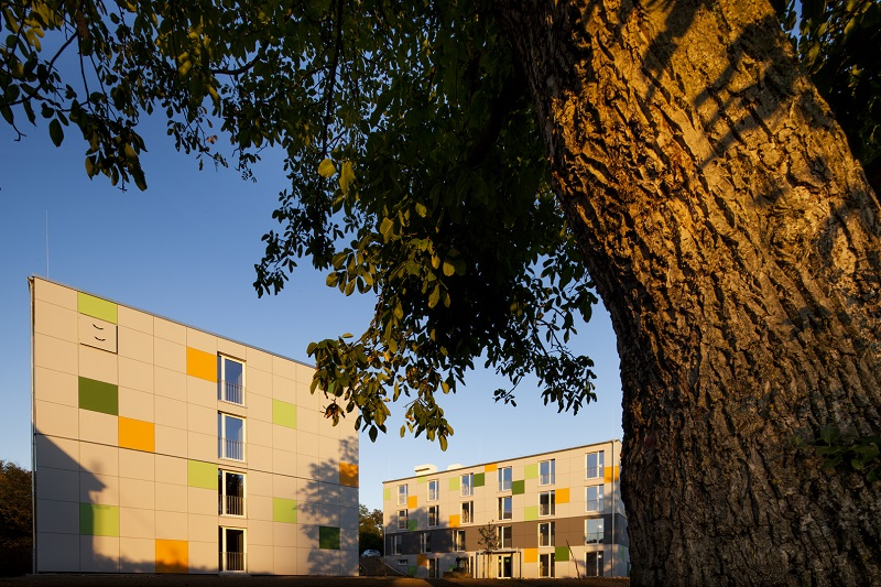 Ansicht Enercase mit Baum