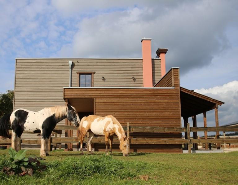 Hinterlüftete Holzfassade