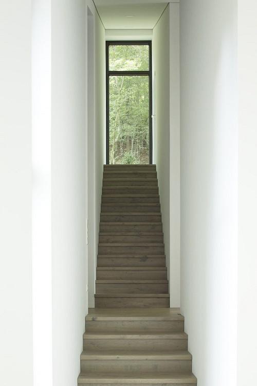 Treppenaufgang mit Blick in den Eichenwald